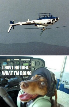 I have no idea what I'm doing helicopter